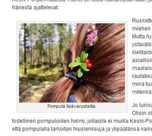 Ruutukaappaus blogista. Blogitekstin kuvituksena on pompula lisävarusteella.