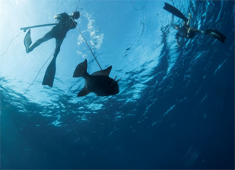 Pedro Gomézin kalapaikka on suojainen, vaikka muurin takana kulkee Havannan vilkasliikenteinen rantakatu Malecón.