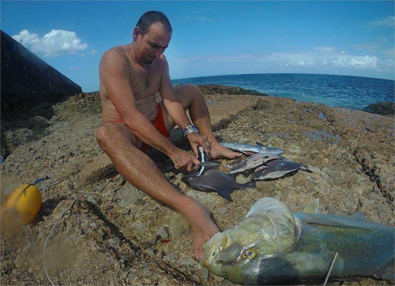 Tararán satamasta ei tarvitse lähteä kauaksi kalaan, koska meri syvenee nopeasti Playas del Esten edustalla.