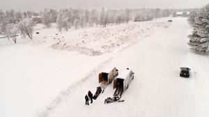 Kokkolan urheilutalon taakse on tuotu jo yli 200 kuormaa lunta keskustan alueelta.