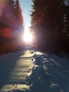 Aurinko 5.2.