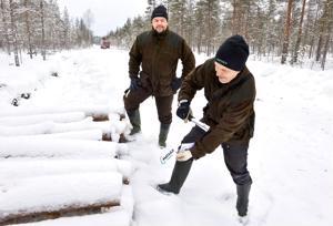 Harri Simola ja Keijo Karhukorpi merkkaavat puupinoa suometsään tehdyllä penkkatiellä Halsuan Ylikylän Kuuslammen maastossa.