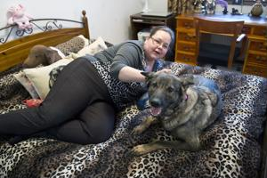 Jaana Savikankaan Ronjalla on lupa nukkua emännän kanssa sängyssä. Ihmisen paras ystävä on jalostettu pitämään seuraa ihmiselle yötä päivää, joten koirat suhtautuvat yleensä huolenpitotehtäväänsä erittäin vakavasti.