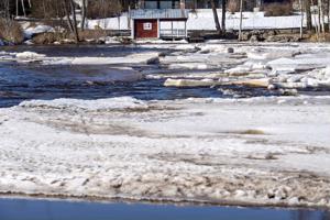 Perhonjoen jäätilanne Rödsön sillan pohjoispuolella torstaina. Eteläpuolella siltaa jäät ovat vielä enemmän paikoillaan.