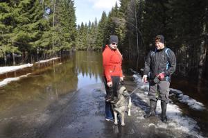 Saija ja Lasse Märsy sekä Tessu-koira totesivat, ettei Letontietä pääse edemmäs. Heidän kotinsa Holmalla on turvassa tulvalta.
