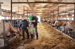 Korkeatuottoisesta karjasta palkitut Päivi ja Jouni Kaustinen kokeilevat maitotilallaan myös erikoisrotuja. Suomenkarjalehmä Herutus on lasten Fiian ja Onnin suosikki.