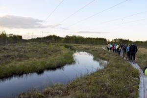 Reisjärvellä otetaan kantaa Metsähallituksen tarjoamaan kummisopimukseen vielä lähiviikkoina. Sopimuksella turvattaisiin yhteys Peuran polkuun jatkossakin.