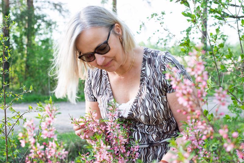 Kääpiömanteli kukkii Anita Rättyän pihalla jo täyttä häkää.
