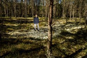 Museolehtori Lauri Skantsi seisoo painanteessa, jossa on sijainnut kivikautinen asumus noin 5000 vuotta sitten.  Kannuksen Kivinevan kohde tutkitaan koululais- ja yleisökaivauksin syksyllä.