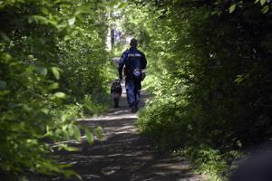 Poliisi ja riistanhoitoyhdistyksen väki etsivät sutta perjantaina Pietarsaaren Varvetin ja Hällanin alueilla.