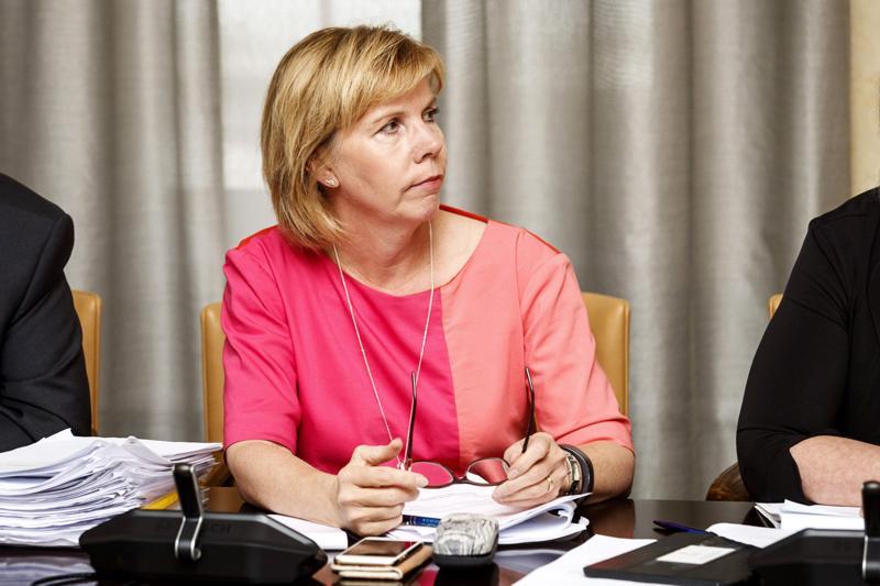 Valiokunnan jäsen, RKP:n puheenjohtaja Anna-Maja Henriksson totesi, että kokoushuoneessa olivat käytössä kaikki mahdolliset aivosolut.