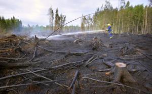 Toholammin metsäpalon sammutustyöt ovat jälkisammutusvaiheessa.