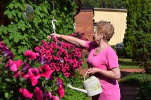 Ritva Honkala muistelee, miten ennen porraspielet koristeltiin asiaankuuluvan juhlaviksi tuorein, tuoksuvin koivunoksin ja tupaan tuotiin kesän kauneutta luonnonkukkakimpuilla.