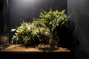Floristi Tanja Lähdeaho sitoi luonnonkukista kolme erilaista kimppua kesäkotiin. Pöytäkoristeeksi sopii kimppu vuohenputkesta, koivusta, kanervasta ja mustikanvarvuista. Väripilkuiksi pääsevät muutama kissankello ja hiirenvirna. Siron kimpun saa pienikukkaisista lemmikeistä ja niittyleinikeistä mustikanvarpujen ja lyhyeksi katkaistujen vuohenputkien kanssa. Trendikäs viherkimppu syntyy mesiangervosta ja vadelmanoksista.