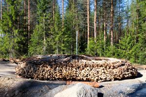 Tervahautaan on ladottu noin 30 kuutiota puuta.