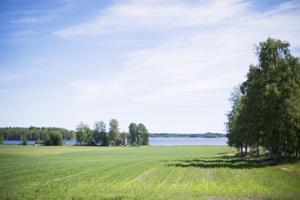 Ullavanjärveä ympäröivät kylät ovat alkaneet miettiä mahdollisuutta osakuntaliitoksesta. Asia puhuttaa koko Ullavaa.