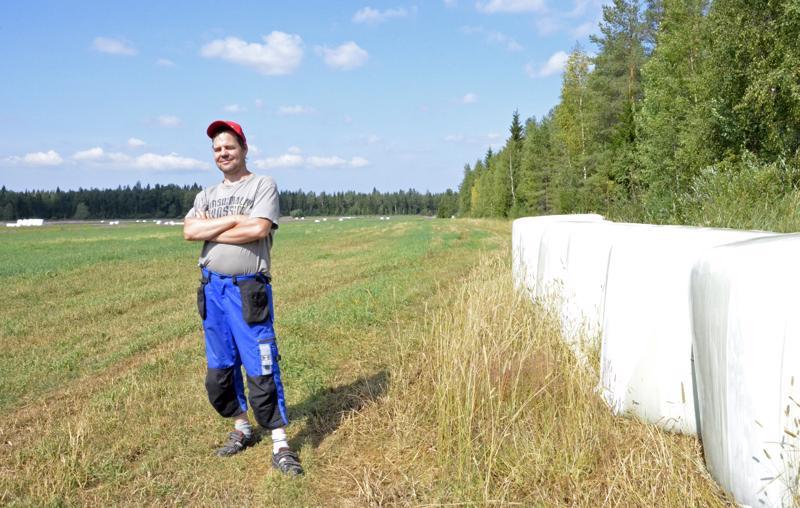 - Tässä on normaalisti tilamme paras peltolohko. Ensimmäinen sato niitettiin tästä juhannuksen jälkeen ja tuossa on tulos: seitsemän paalia tältä lohkolta, josta normaalisti tulee 30 paalia, Antti Takalo esittelee.