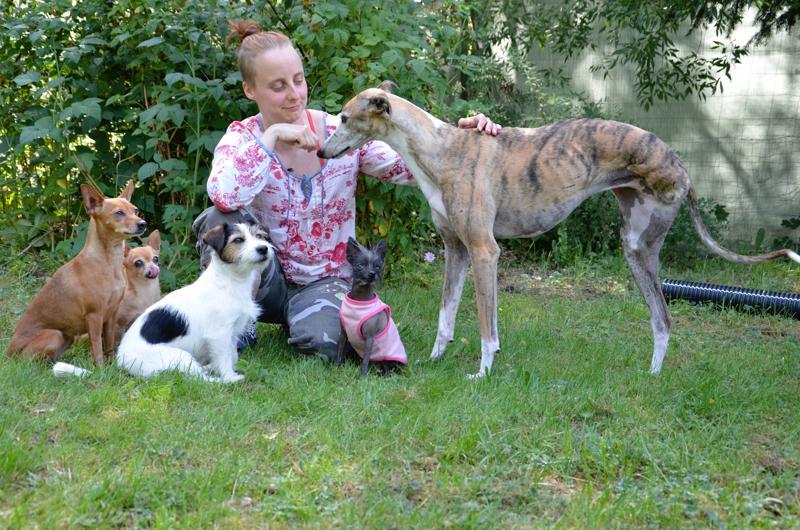 Jaana Siermala sekä koirat Venla (vasemmalla), Papu, Näkki, Diva ja Luna.