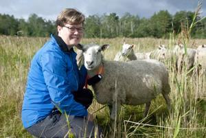 Leila Niemelä kävi tervehtimässä Harrbådan alueella laiduntavia lampaita.