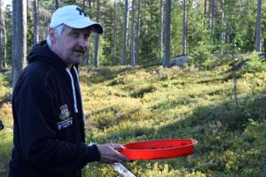 Ari Välimaa ei tavcittele voittoa marjakaupoilla, sillä leipätyö hänellä jo on ja poiminta on vain harrastus. Myös keino pitää selkä kunnossa.