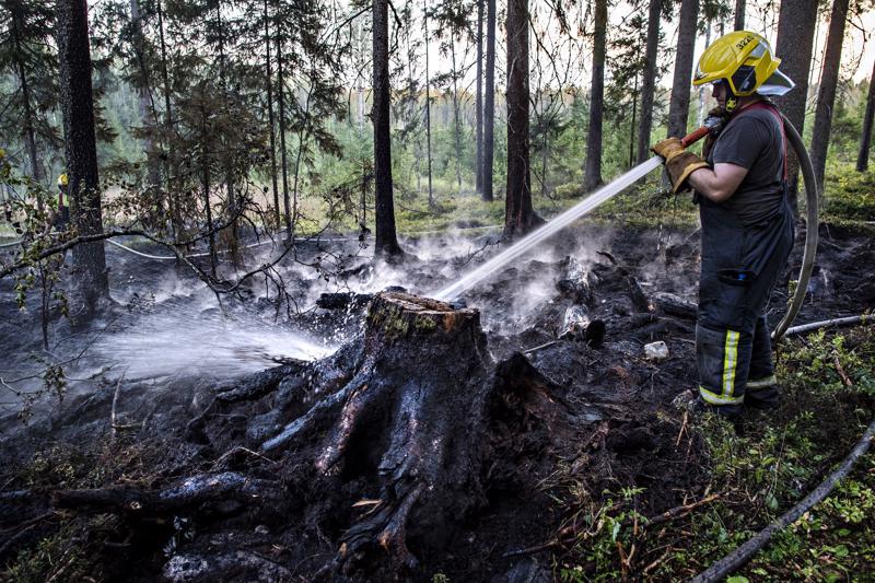 Salama sytytti pienen metsäpalon Lahnakoskella viime viikolla.