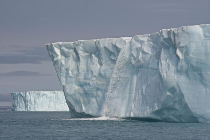 Kun arktisen alueen jäätiköt sulavat, ne nopeuttavat ilmastonmuutosta, mutta myös heikentävät jääpeitteestä riippuvaisten lajien elinympäristöä.