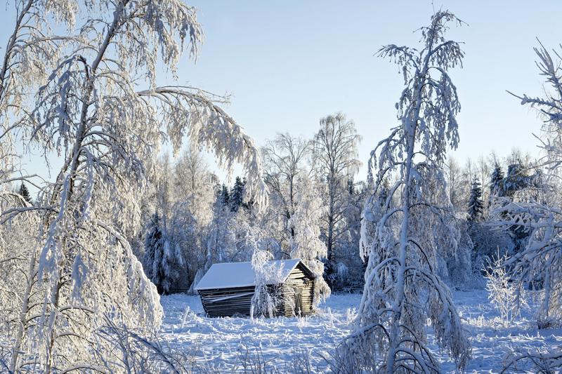 Talvet eivät ole koskaan olleet sisaruksia keskenään, mutta luminen maisema uhkaa kadota ilmaston muuttuessa.