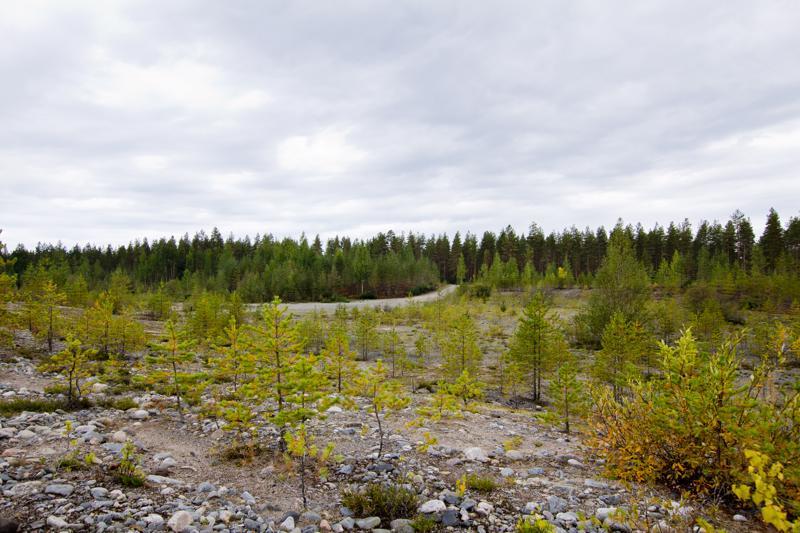 Tänne ei kuulu perustaa motocross-rataa, kuului Pohjois-Pohjanmaan ELY-keskuksen linjaus.