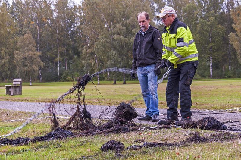 Juhani Hannila ja Aarre Arrajoki toteavat ärviän voittajaksi Potin puhdistushankkeessa.