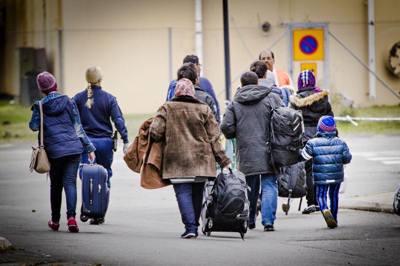 Vuonna 2015 Suomeen saapui yli 32000 turvapaikanhakijaa. Samasta vuodesta lähtien reilut 400 kielteisen turvapaikkapäätöksen saanutta on pystynyt hankkimaan työnteolla oleskeluluvan Suomeen.