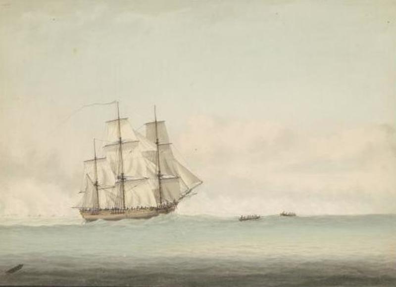 Endeavourilla on Australian-laivana legendaarinen maine. Se on ikuistettu lukuisiin maalauksiin ja siitä on tehty useita kopioita.