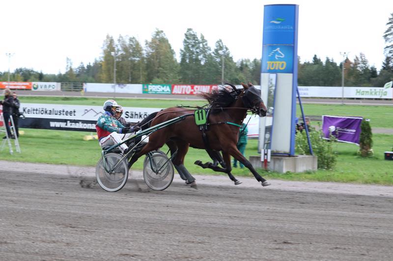 Hannu Hietanen ohjasti Rose' s Taran arvovoittoon Lappeenrannassa.