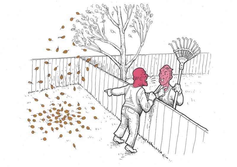 Lähellä tonttien rajaa seisova puu saattaa aiheuttaa suukopua.