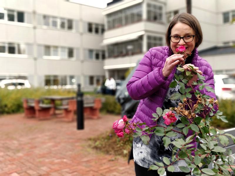 Sairaalapappi Catharina Englund nuuhkaisee ohimennessään ruusun viimeisiä tuoksuja ennen sen lakastumista talven alle.