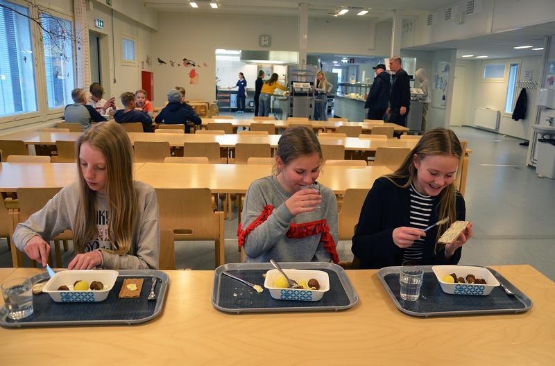 Seitsemäsluokkalaisten Salla Särkelän, Katariina Eskolan ja Enni Kalliokosken mielestä kouluruoka on yleensä hyvää. Tyttöjen lautasella nyt lihapullia, perunaa ja salaattia. Juomana on vesi ja lisukkeena näkkileipä.