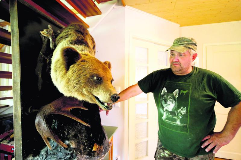 Risto Rajalan mukaan karhujahti sujui tänä syksynä pääpiirteissään hyvin, vaikka yksi yhteislupa-alueen kaatoluvista jäi käyttämättä. Kuvan täytetty karhu on ensimmäinen, joka kaadettiin Perhonjokilaakson alueella, kun lupia ryhdyttiin jakamaan uudelleen vuonna 2013.