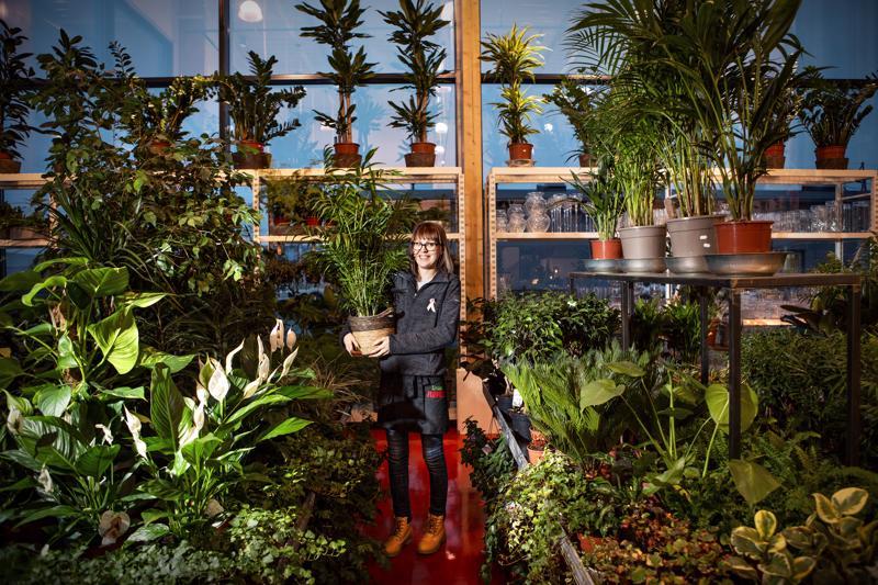 -Ruukkukukkien hoitaminen ja kukkien hoito-ohjeiden antaminen kuuluvat sidontatöiden ohella floristin työhön, kertoo kahdeksan vuotta alalla työskennellyt Tea Tuikka.