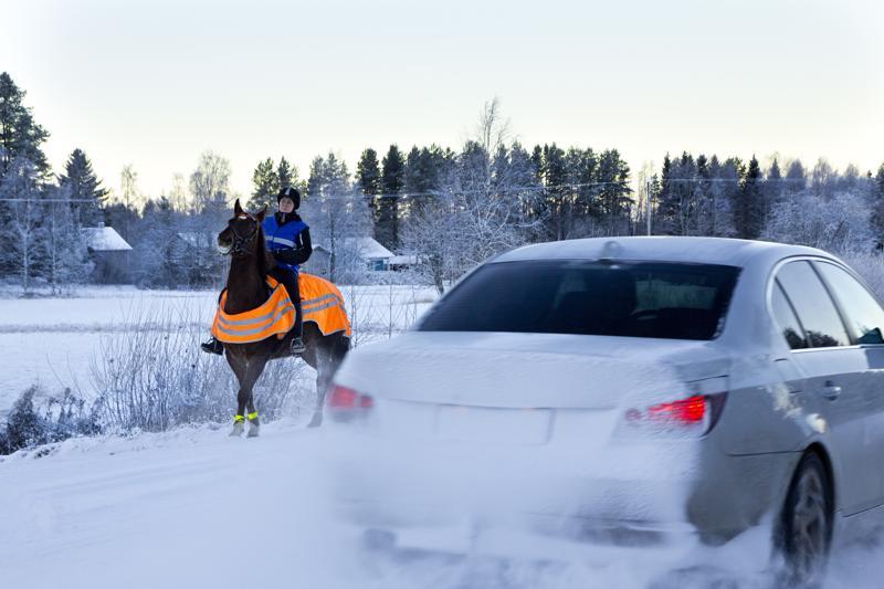 Haapajärven hevosharrastajat toivovat autoilijoilta ja muilta tielläliikkujilla malttia ja varovaisuutta näiden kohdatessa hevosia tien päällä. Haapajärven Ratsastajien puheenjohtaja Kirsi Siniluoto muistuttaa myös hevosharrastajia oman näkyvyyden turvaamisen tärkeydestä. Siniluodon hevonen oli kuvaushetkellä liikkeellä varsin näyttävänä, ja kuvan auto ohittikin tilanteen maltilla.
