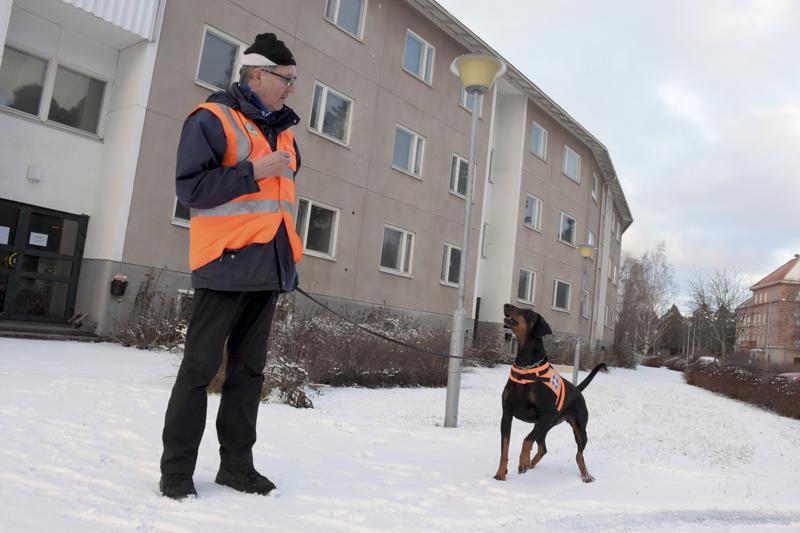 Kuusivuotias Kiira on omistajansa Veijo Nurmelan pelastuskoirakoulutuksessa. Erinomaisen harjoituspaikan tarjoaa asukkaista tyhjennetty Maskenin kerrostalo.