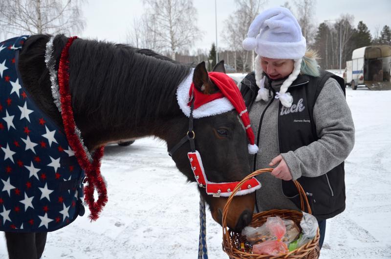 Hanne Rönkön Samu-hevonen kävi viime viikolla ilahduttamassa Kaustisen toimintakeskuksen ja Vetelin keskuskoulun väkeä.