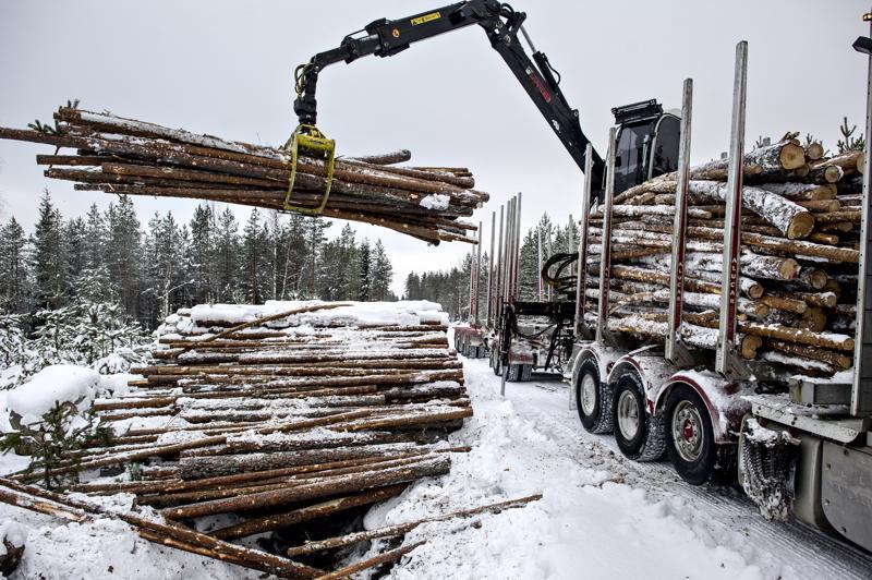 Pahimmillaan luvatta liikkuja voi pilata metsänomistajalta koko talvikorjuukauden. Hyvin jäätynyt penkkatie kestää raskaan ajoneuvon, mutta niin kauan kun maa on sula, siihen voi tulla vaikeasti korjattavat urat paljon kevyemmistäkin ajoneuvoista.