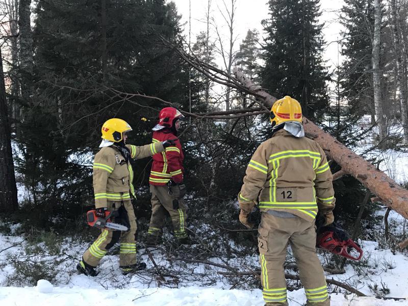 Pelastuslaitos katkoi tielle kaatuneita puita keskiviikkona Halkokarin muistomerkin luona Kokkolassa.