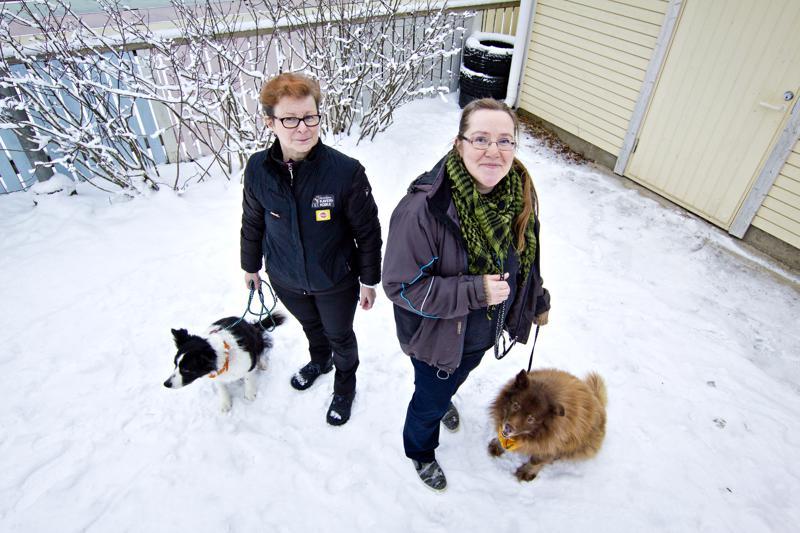 Arja Mattila (vas.) on ollut kaverikoiratoiminnassa mukana jo viisitoista vuotta, Marja Tiitolla on takanaan viisi vuotta toimintaa.