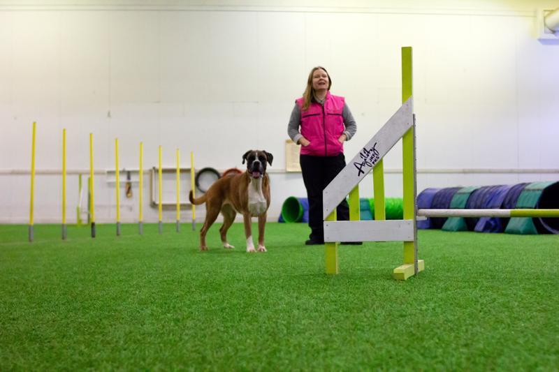 On hienoa nähdä, kun koira kehittyy ja samalla myös oma luotto tekemiseen kasvaa, Kirsi Oja kertoo. Työparina tällä kertaa Lina.