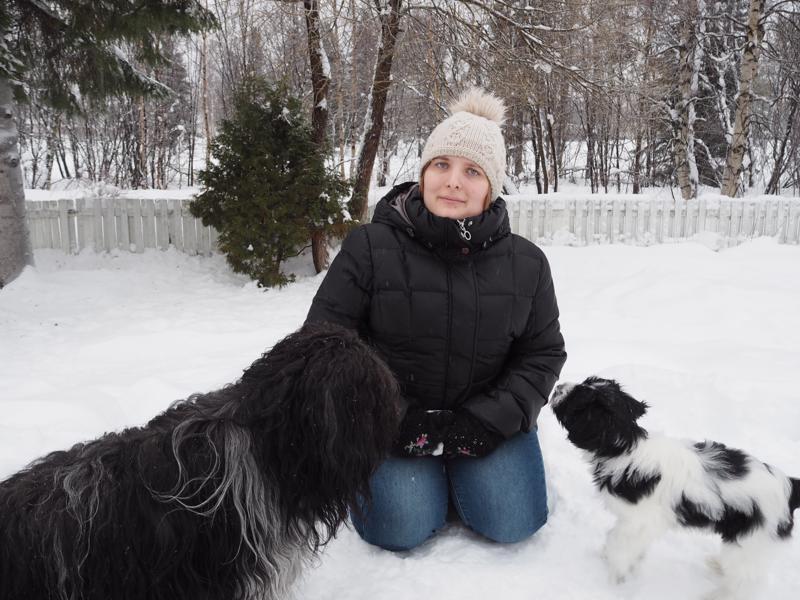 Schapendoes-rotuinen Ove on Saana-Lotta Korkalan uusi kisakoira. Lumesta tykkäävä Ove sai kaverikseen yhdeksän viikon ikäisen samanrotuisen Hanneksen.