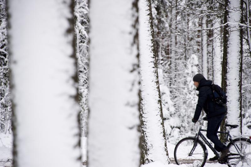 Liian moni pyöräilijä luotta enemmän hyvään onneen kuin suojakypärään.