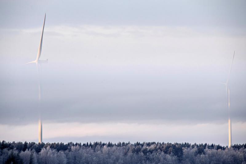 Halsualle suunniteltujen tuulivoimaloiden korkeus olisi korkeintaan 300 metriä.