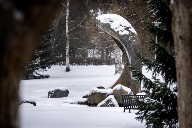 Puistoja ja viheralueita toivottiin työpajassa kaupunkiin enemmän. Länsipuistoon ehdotettiin myös pensasaitoja, jotta tuulisuus vähenisi ja viihtyisyys kasvaisi.