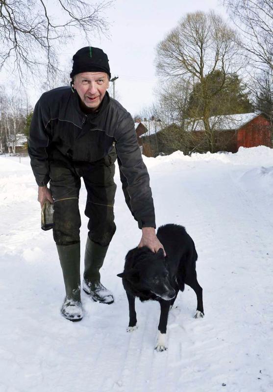 Susi kulki helmikuussa useaan kertaan pihan läpi polkua pitkin. Laku ei halunnut mennä illalla ulos pihalle, Kyösti Uusitalo kertoo.