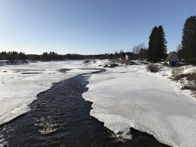 Viime vuonna Kalajoki tulvi Alavieskan kohdalla. Tänä keväänä tulvan ennustetaan olevan suuruudeltaan keskimääräinen.